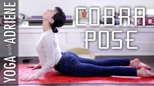 Cobra Pose – Foundations Of Yoga