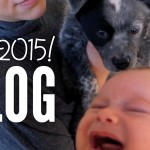 Babies, Puppies and other Updates