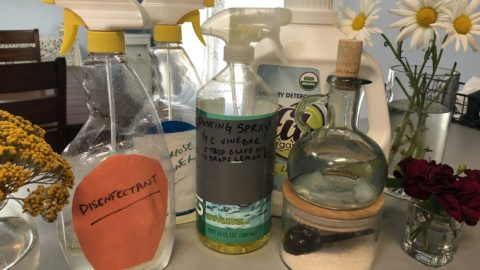 My Plastic-Free Life: Homemade Household Cleaners